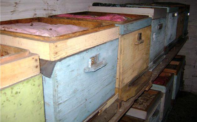 Ульи с пчелиными семьями