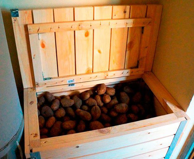 Ящик для хранения картофеля на балконе зимой - всё о балконе.