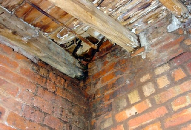 Плесень на потолке и стенах