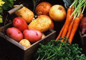 Овощи в подвале